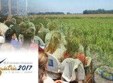 Inscripciones abiertas para Buiatría 2017