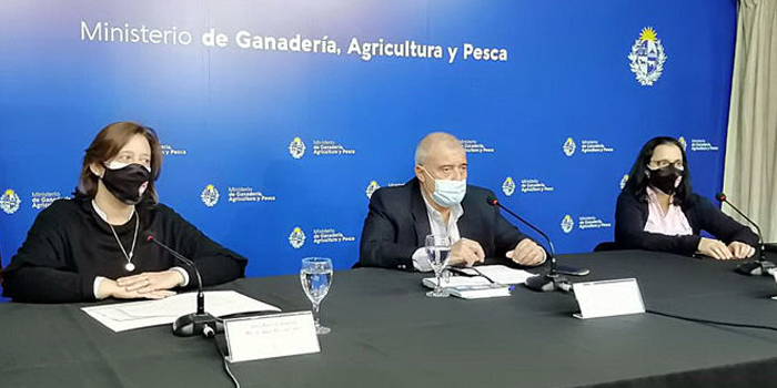 Presentaron las 48ª Jornadas Uruguayas de Buiatria, este año 100 por ciento virtuales